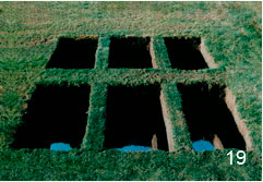 Tanya Preminger. Window into Another World. 1989. Soil, grass, mirror. 90 x 500 x 300 cm.