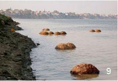 Petre Petrov. 2005. Varanasi, India