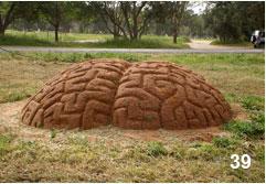 Tanya Preminger. Labyrinth. 2007. Soil. Arsuf Kedem