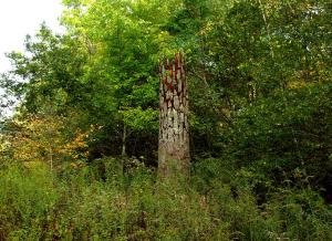 Cornelia Konrads. Tree memorial, 2007 iron, bark, wire, paint. 5 m high x 0.9 m diameter. East Haddam CT (USA). www.cokonrads.de