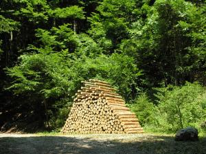 Cornelia Konrads. Piled forest, 2006 pine trunks, iron. 4.4 m high x 2.7 m long x 1.2 m wide . Borgo Valsugana (Italy). www.cokonrads.de