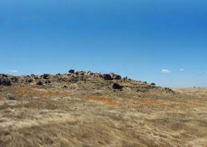 קרלוטה ברונטי. כוכב מדבר, 2010. חול צהוב ואדום. 130 X 75 מטר. דרום אוסטרליה. www.carlotta-brunetti.de