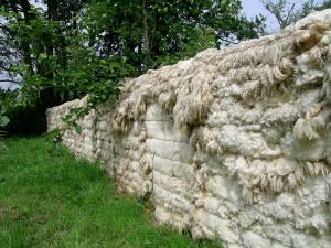 Bob Budd. Sheep's Wall, 2009 Sheep fleeces, wood and books.1300 x 120 x 70 cm. Devon, England. www.axisweb.org/artist/bobbudd