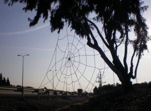 """דני מנהיים. קורי ה-כביש. 2008. חבל סיזל 12 מ""""מ. 10 X 7 מטרים. ארסוף קדם, ישראל"""
