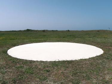 """יעל קפלן. """"לתת אורז"""". 2014. עבודת-אדמה. הצבה של אורז. קוטר 9 מטר."""
