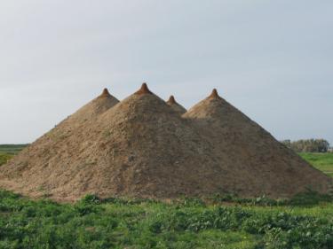"""""""Pyramid"""", Israel 2009. Earth, grass, 400x1200x1200 cm."""