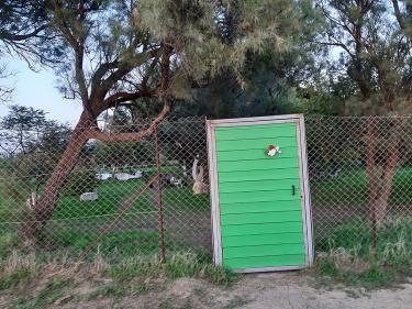 דלת ירוקה לגלריה הירוקה