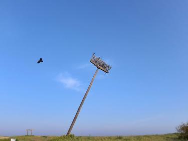 """""""המטאטא"""" של דני מנהיים עם עורבים"""