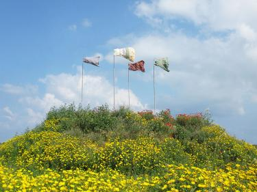 "Tanya Preminger. ""Weather Vane"". 2011 Earth, grass, iron, dresses, 6 x 12 x 12 meter,"